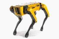 Boston Dynamics Released Open-Source Code for the 'Spot' Robot Dog