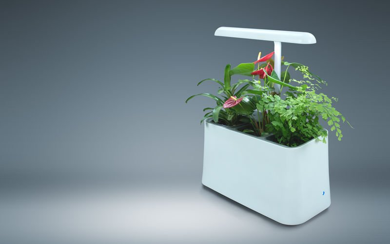 brēth is a plant-based air purifier that bridges the gap between aesthetics and functionality.