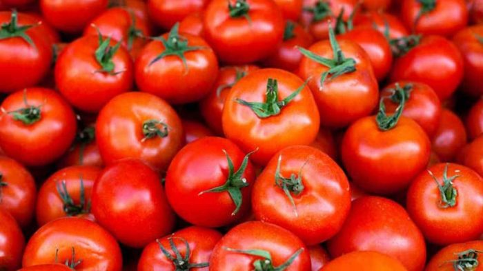 AI-enabled services that improve tomato yields