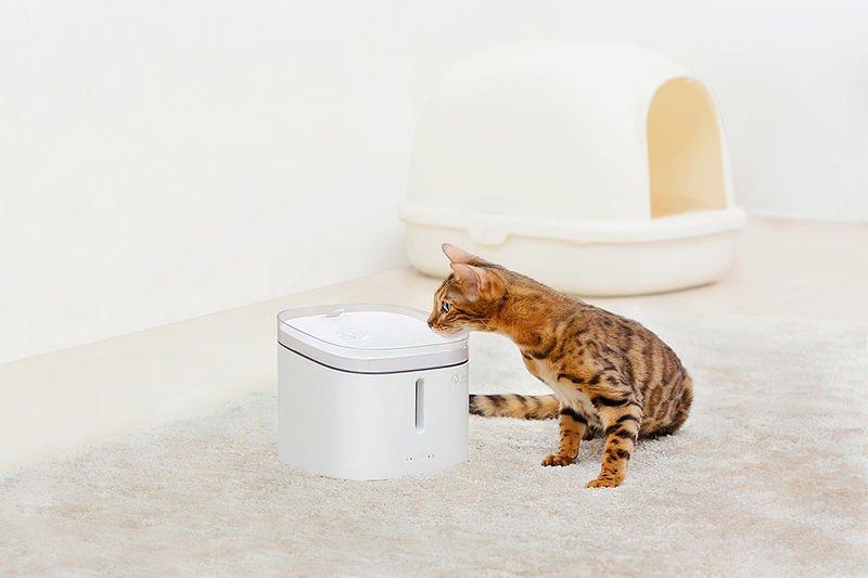 The 'PetX' Smart Pet Water Dispenser