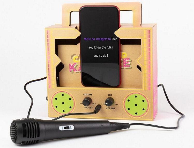 A Cardboard Karaoke