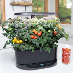 The New AeroGarden Bounty Works with Amazon Alexa