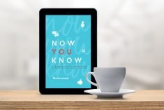 "If You Don't Know – Soon You'll Know with the ""Now You Know Guide"""