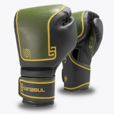 Vegan Boxing Gloves