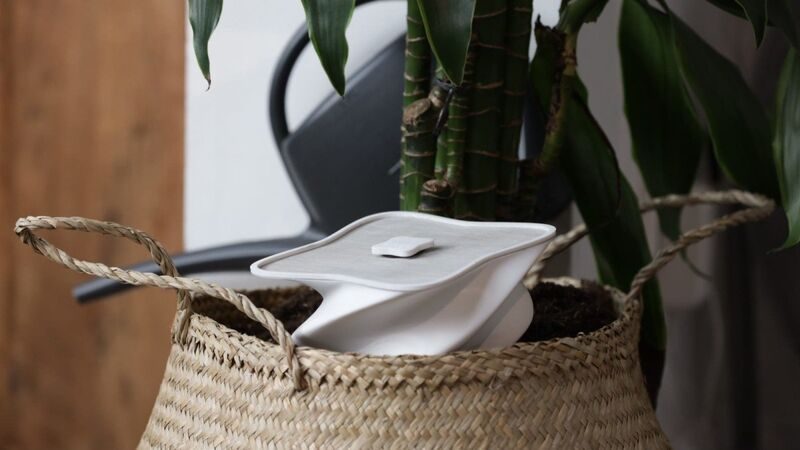 The hûs+ flower Offers Real-Time Updates on Plant Health