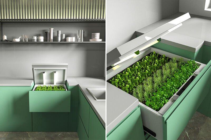 The Conceptual 'Home Garden'