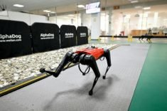 Chinese tech company develops robo-dogs