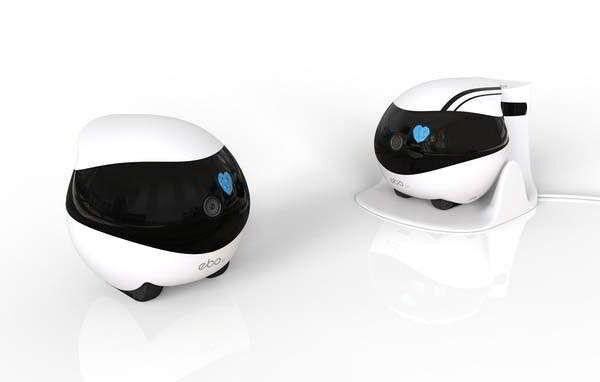 The 'EBO' Robot