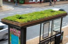 Leicester City Introduces Bee Bus Stops with Living Roofs
