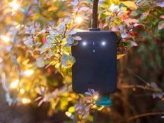 The Wyze Plug Outdoor Sets Schedules, Monitors Energy